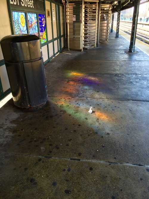 Rainbow reflections at 231st Street // Photo by Samara Abramson